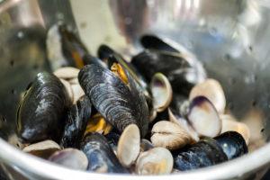 Mussels in Black Sheep Ale
