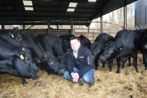 Wagyu make national awards shortlist